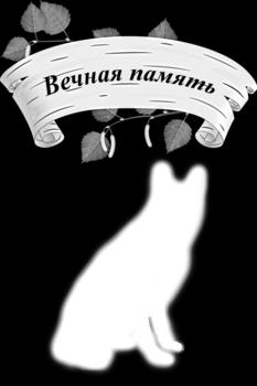Dzīvniekiem - 13